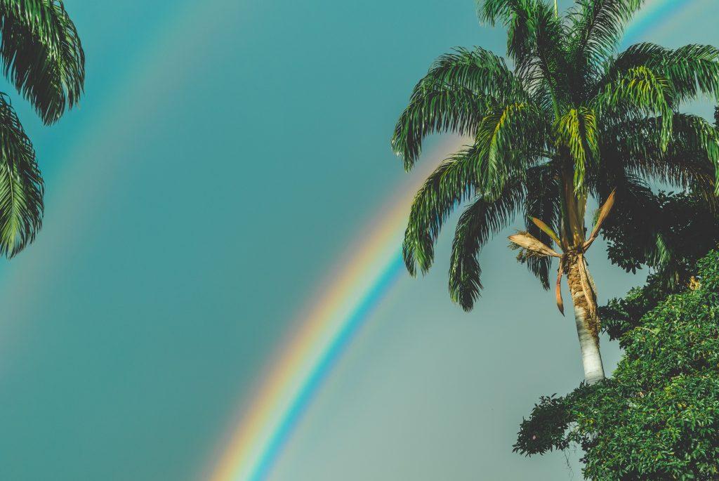 雨上がりの虹、良い天気