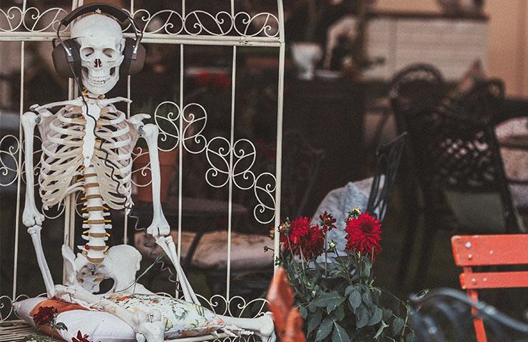 スケルトン(骸骨)の写真
