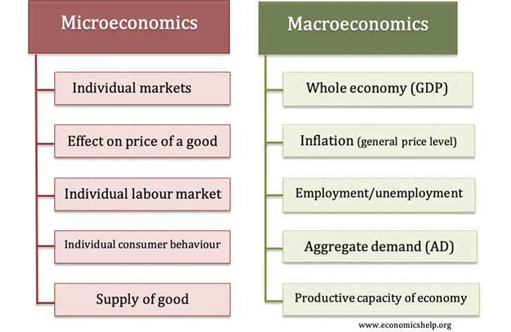 ミクロ経済学とマクロ経済学との違いの比較表