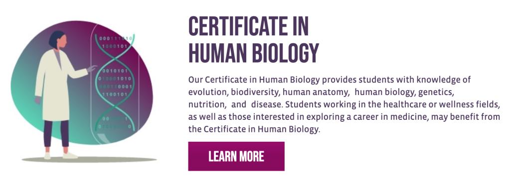 Certificate in human biology